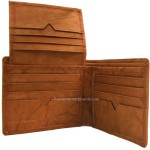 Radiant Bill Fold Wallet