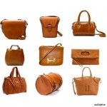 Designs of Leather Bags